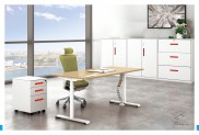 OFFICE TABLE B50-5